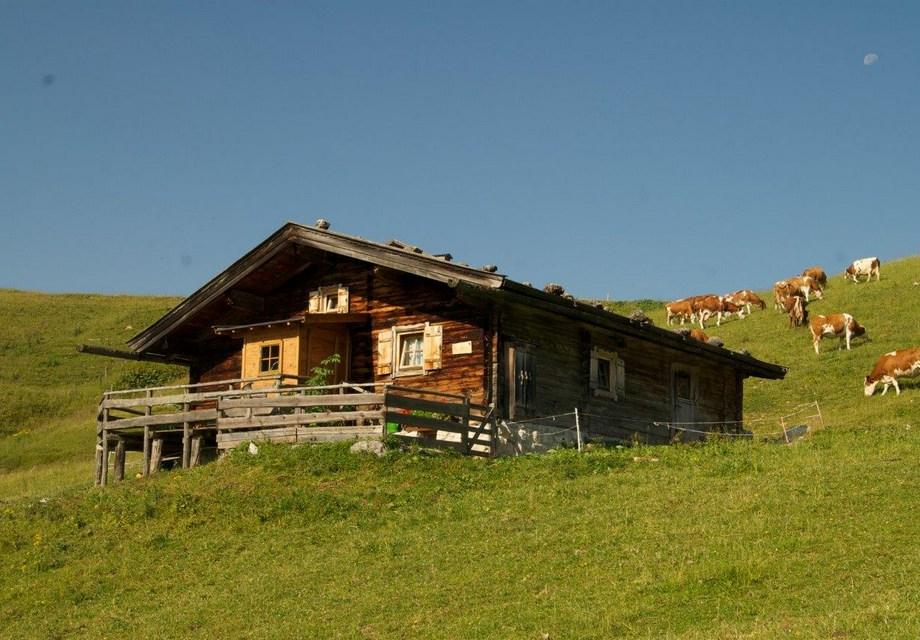 Maison de vacances Salzburg Lofer (2749351), Lofer, Pinzgau, Salzbourg, Autriche, image 1